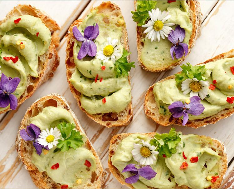 Avocado Rezepte: Delikates Aroma schmeichelt dem Gaumen
