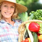 Diät Rezepte: Schnell, einfach und gut kochen